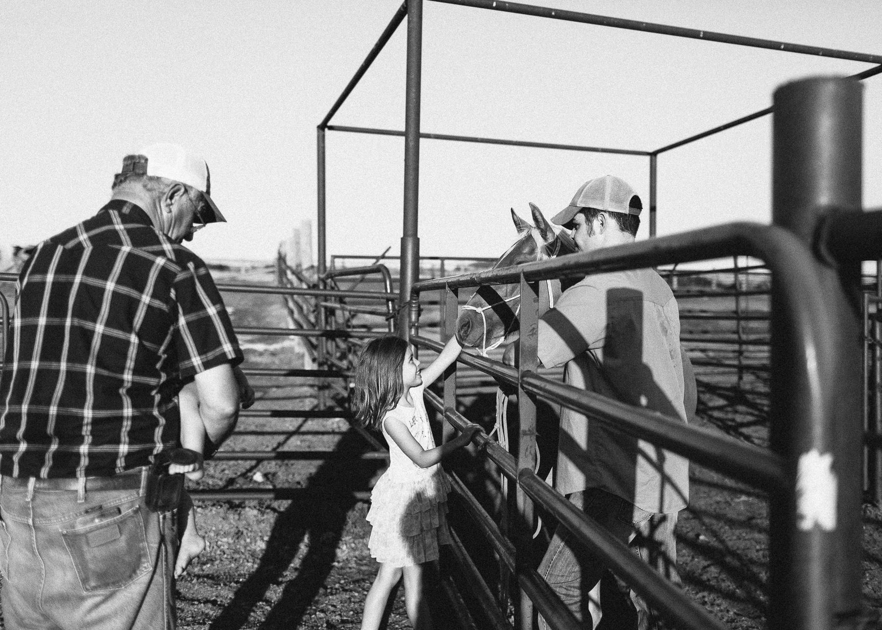 horse smelling girl