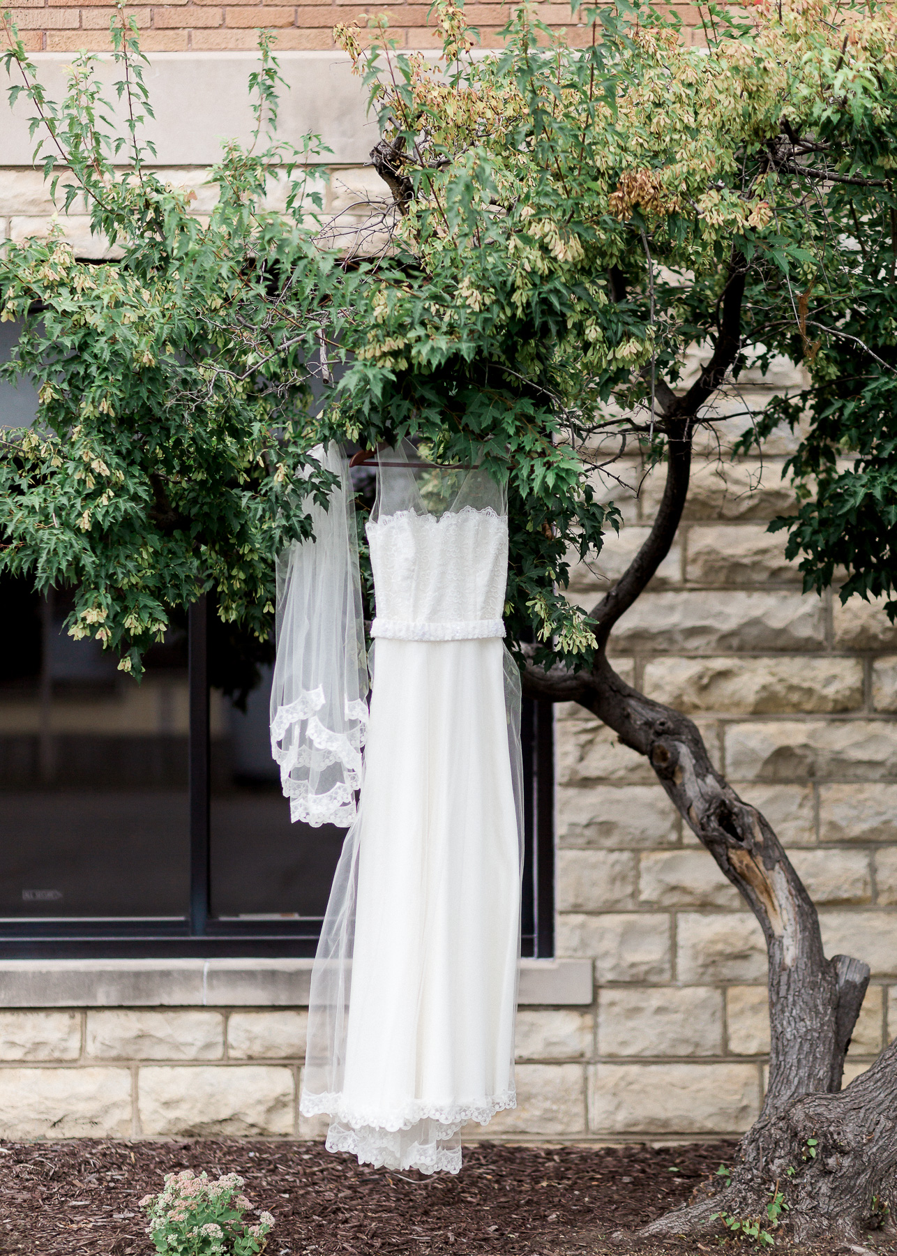 wedding dress under tree