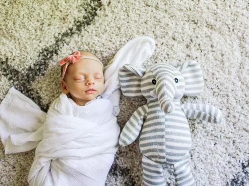 Sweet Juliet | Kansas Photographer | Topeka Photographer